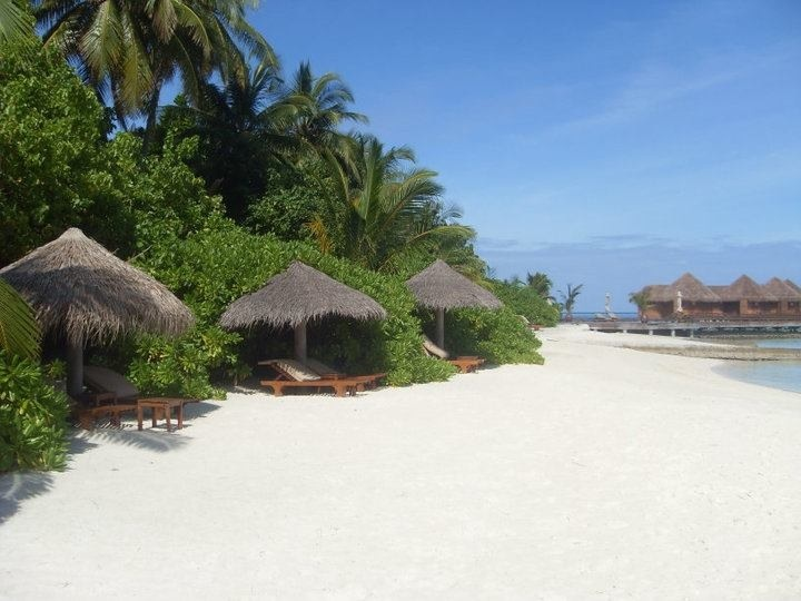 I love the Maldives!!