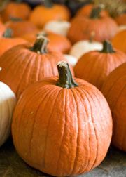Guide to KC Pumpkin Patches, Corn Mazes and delicious Apple Cider! http://www.visitkc.com/things-to-do/attractions/pumpkin-patch/index.aspx