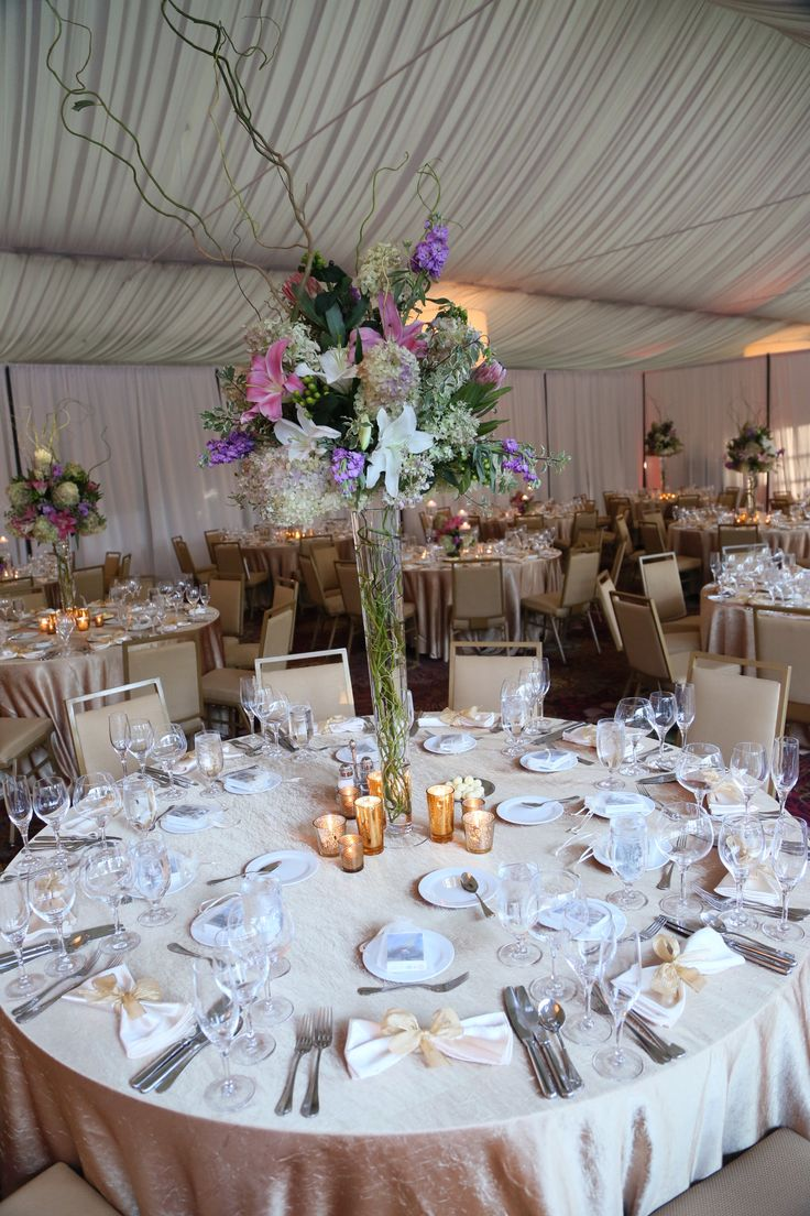14 best marriott lincolnshire hotel wedding decor images on a soft pink provides a delicate glow in the lincolnshire marriott resorts grand marquee pavilion junglespirit Gallery