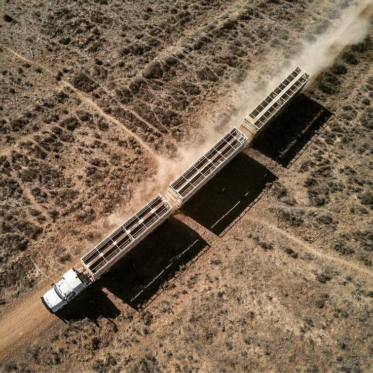 #isjon_isgood Road train - six decks express #trucking #bigrig #outback #australia #macktruck #cattle #machine #aerial #dust
