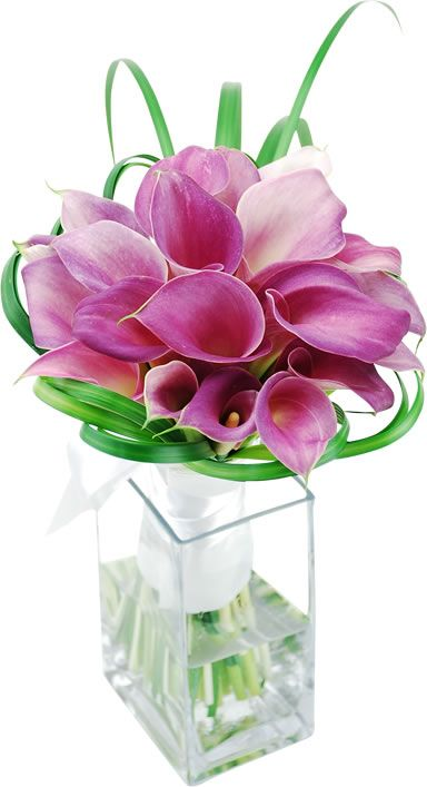 Images about floral calla lily on pinterest