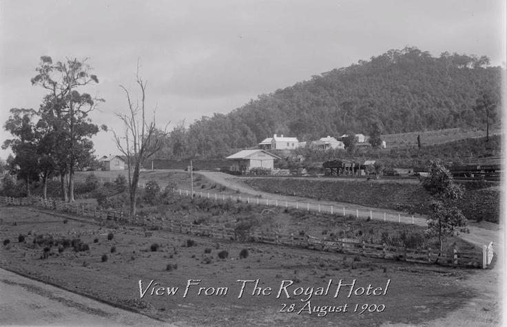 Shaun Kenaelly: Upper Fern Tree Gully from the Royal Hotel, 1909