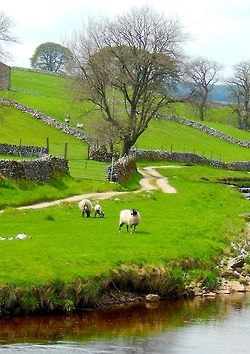 Oughtershaw, Yorkshire Dales, England