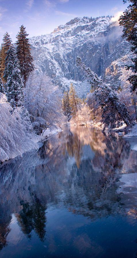 Reflections in Yosemite National Park, California | Molly Wassenaar, mountain, snow, wild, water, lake, beauty of Nature, trees, silence, peaceful, solitude, photo