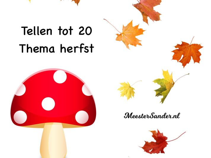 https://meestersander.nl/meester-sanders-apps/apps/educatieve-apps-in-de-praktijk/herfst/