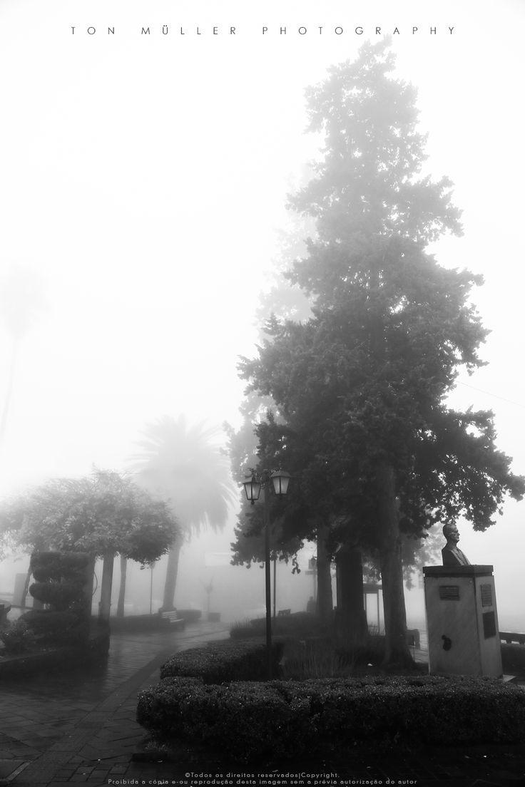 Inverno / Nevoeiro na Serra Gaúcha