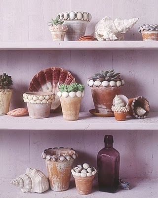 sea shell flower pots - great idea
