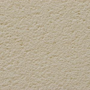 Himalayan Sandstone - Products - Surface Gallery