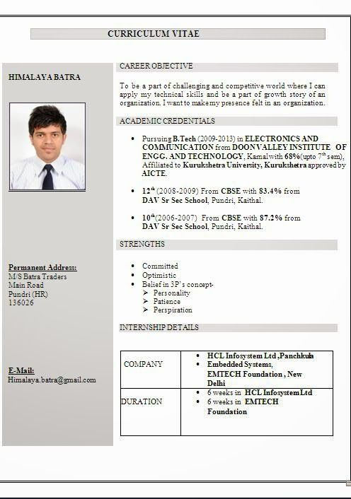 Cv Examples South Africa Sample Template Example
