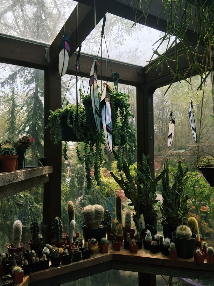 gypsky: Little green house - Forest Witch