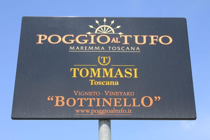 Poggio al Tufo vineyard #Tommasi #Tommasiwine #Tuscany  http://www.poggioaltufo.it/
