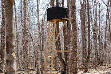Deer Stands Whitetail Deer Hunting Wood Storage
