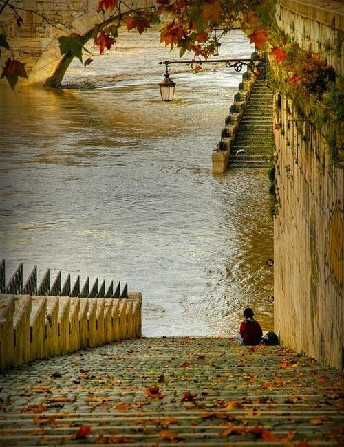 Bank of River Seine, Paris  water outdoors nature trees steps