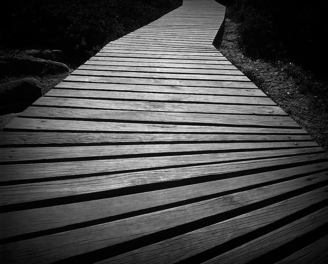 Pathway | Flickr - Photo Sharing!