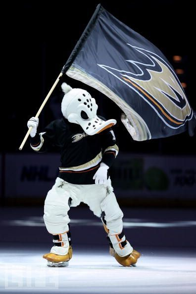 Wildwing, Anaheim Mighty ducks mascot #nhl