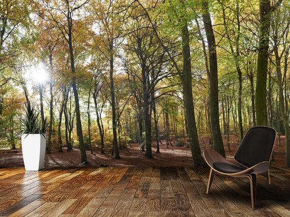 76 best images about stunning forest wall murals on for Autumn tree mural