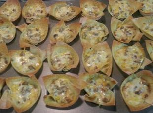 1 pkg won ton wrappers, 1 lb sausage (cook, crumble), 1 1/2c Monterey Jack grated, 1 1/2c sharp cheddar grated, 1c  prepared hidden valley ranch salad dressing, 1/2 c red pepper chopped - Lightly grease muffin tin, press one wonton wrapper in each cup. Spray with oil. Bake at 350 degrees 5 min or until golden brown. Remove from tins, place on baking sheet.  In bowl, combine cooked sausage, cheeses, dressing and red pepper. Fill wontons with mixture. Bake at 350 degrees for 5 min or until…