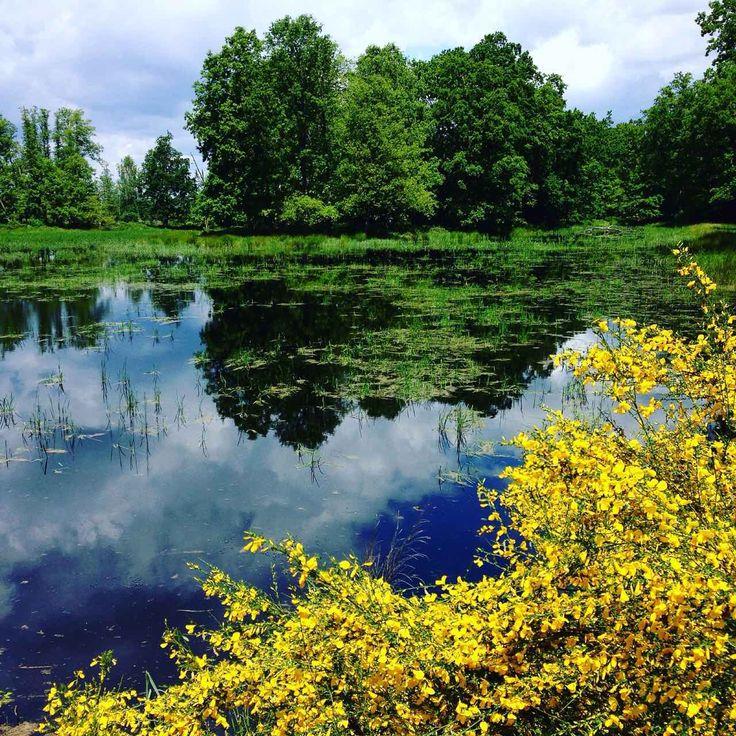 Baláta Lake, Somogy