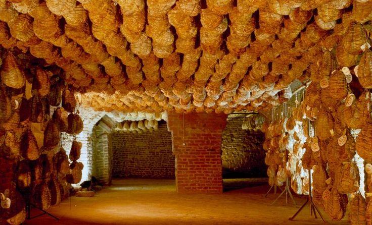 Culatello di Zibello DOP - the king of salami, curing in a cantina.  Heavenly stuff.