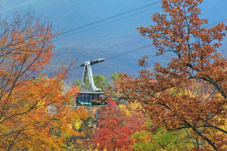 Aerial Tramway Gatlinburg, TN - Photo Courtesy of Dean Brown Photography