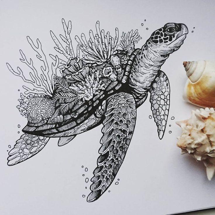 Animal Ink Drawings.