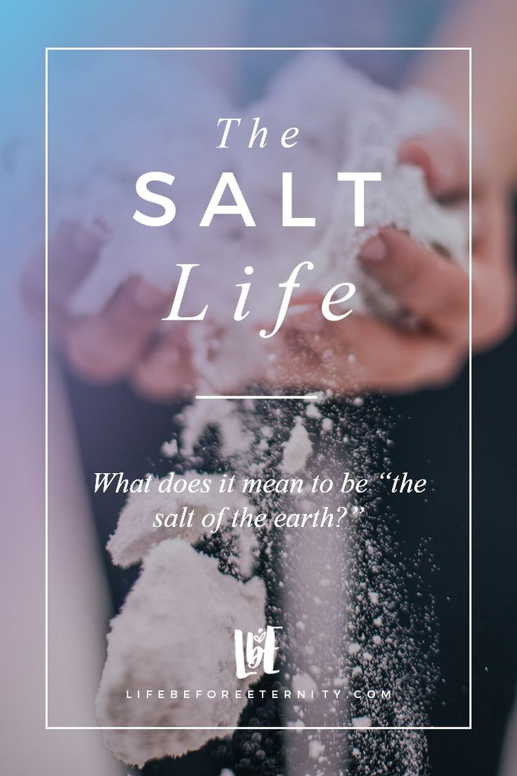 "The Salt Life | What Does It Mean to Be the ""Salt of the Earth?"""