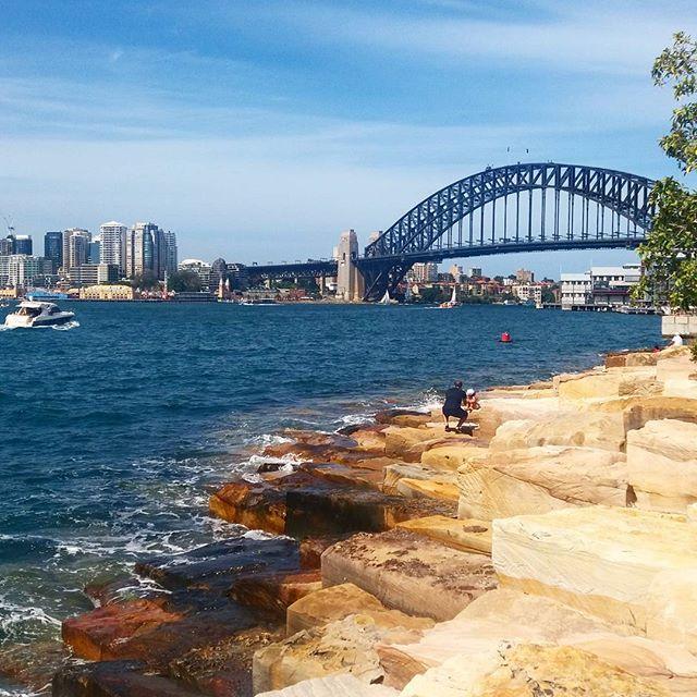 Never get tired of seeing the harbour #sydney #barangaroo #blueskies