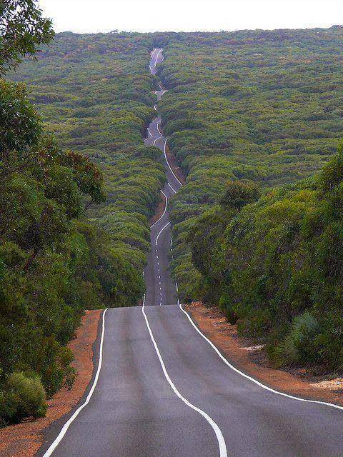 Australia Kangaroo Island Road in Flinders Chase National Park by batjas88
