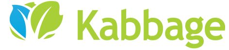 Kabbage vs. OnDeck Capital vs. PayPal – Best Short-Term Loans for Small Businesses