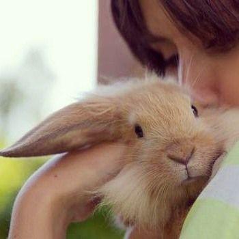 Productos orgánicos para el cuidado de la piel!! I'm organic, I'm cruelty free!! 🌿💜🐇💕