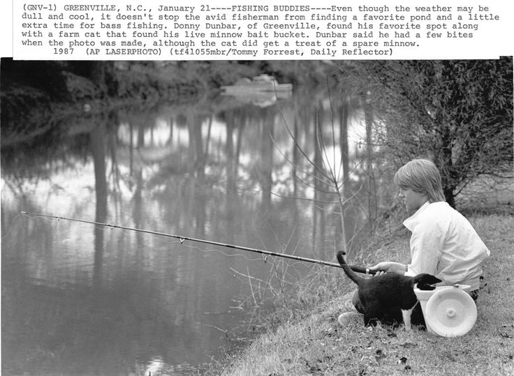 What makes a better fishing buddy than a cat? From the Daily Reflector Negative Collection (#741), East Carolina Manuscript Collection, J. Y. Joyner Library, East Carolina University.