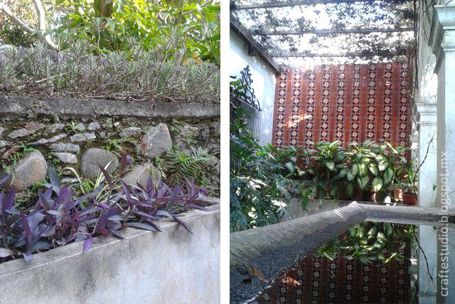 Eco Parque Nogueras, Comala.