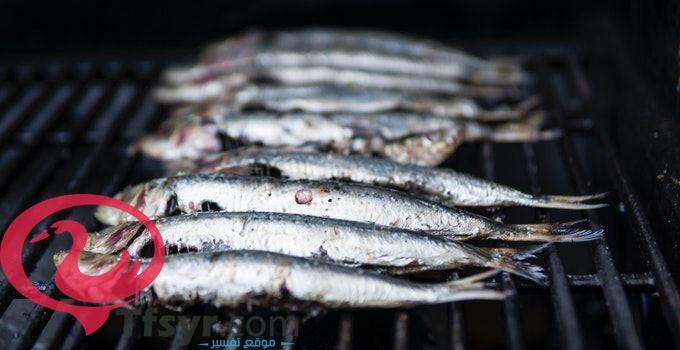 تفسير رؤية السمك في المنام العصيمي 1 Fish Food