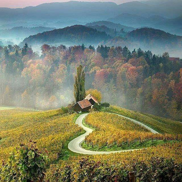 Heart Shaped Road Slovenia Your Holidays In Slovenia Contact Us On Skype E Growman Or E Mail