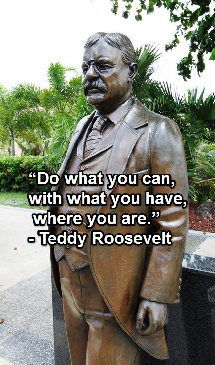 'Do what you can, with what you have, where you are' Theodore Roosevelt