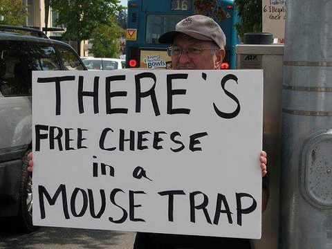Mice and Rats in Laboratories   PETA