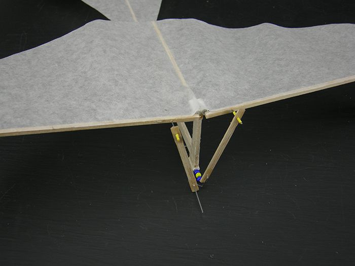 Building an Ornithopter