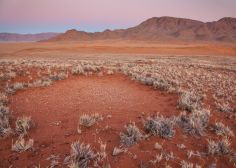 Desert 'Crop Circles' In Australia And Namibia Hold Sandy Secrets