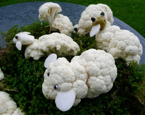 Blumenkohl-Schafe