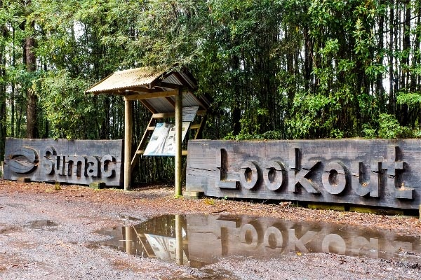 Tasmanian Forests of the Tarkine, South Arthur Forest Drive: Sumac Lookout. Article and photo (copyright) by Carol Haberle.