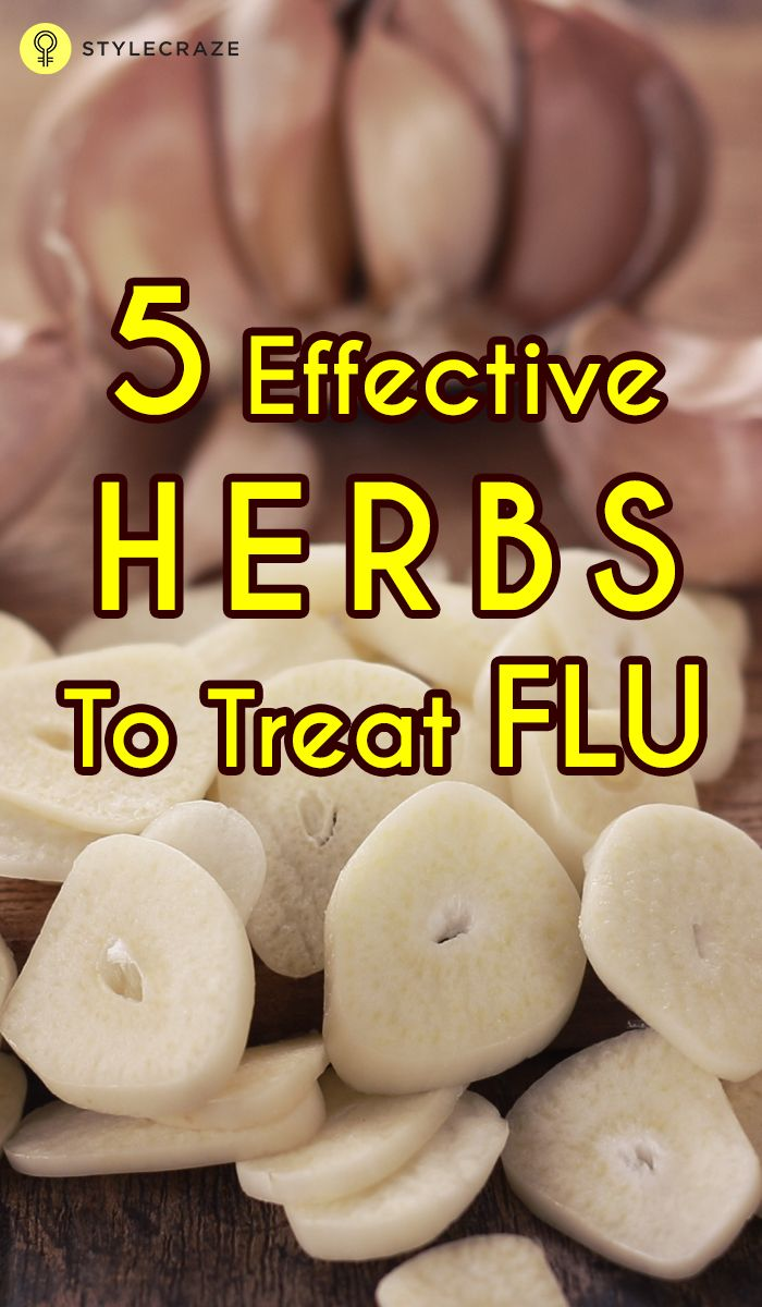 Flu is a respiratory infection often associated with cold & sneezing. Get to know the effective herbs to treat flu reading through this article.