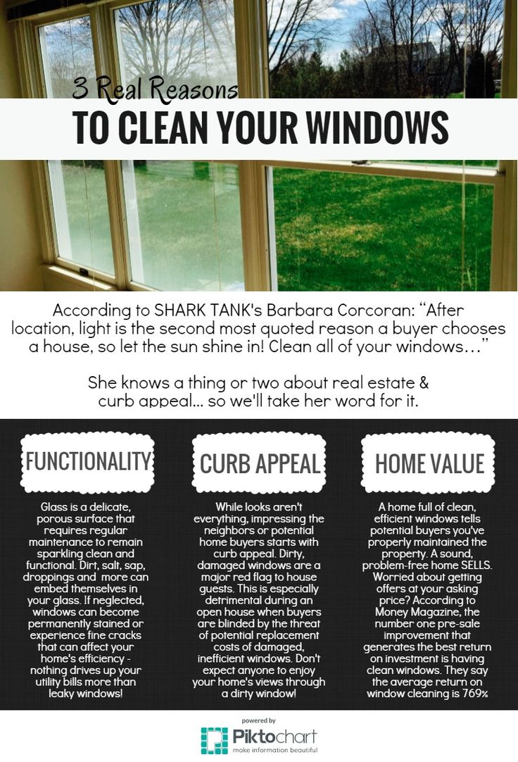 Best thing to clean windows with - 3 Real Reasons To Clean Your Windows Copy Piktochart Infographic Editor