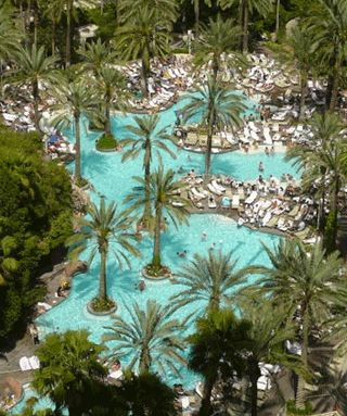 Flamingo Pool at The Flamingo Hotel. One of the best in Las Vegas.