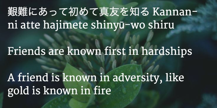 Japanese Quote => friends are known first in hardship