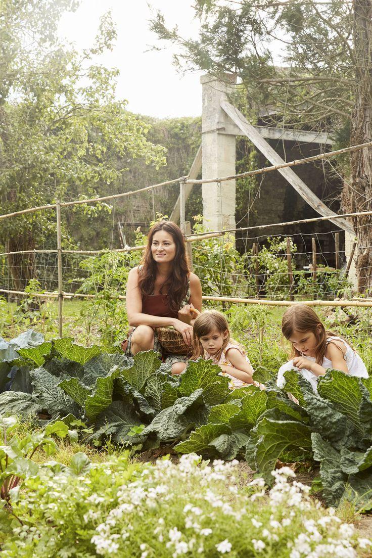 J Adore Mimi Mit Bildern Garten Hochbeet Garten Permakultur
