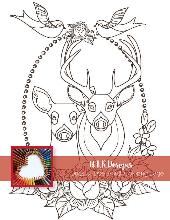 201 best Deer Adult Coloring Pages images on Pinterest | Coloring ...