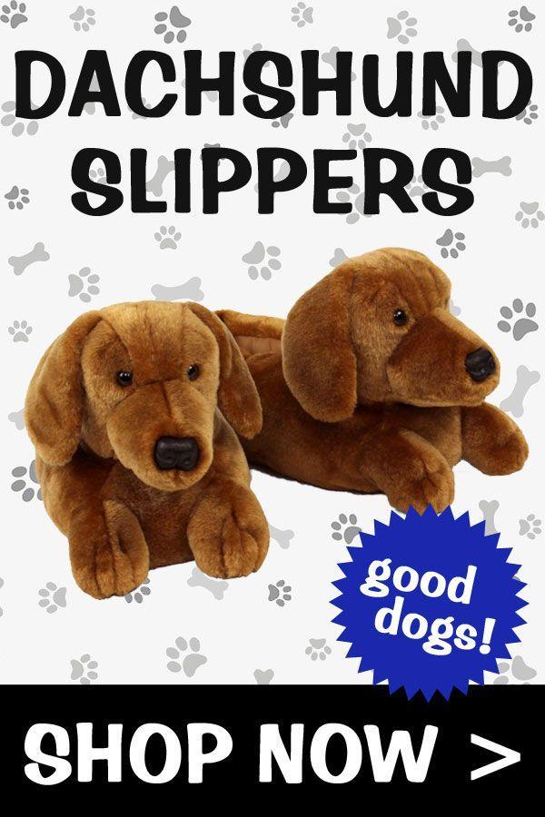 Dachshund Slippers Dachshund Kids Slippers Little Dogs