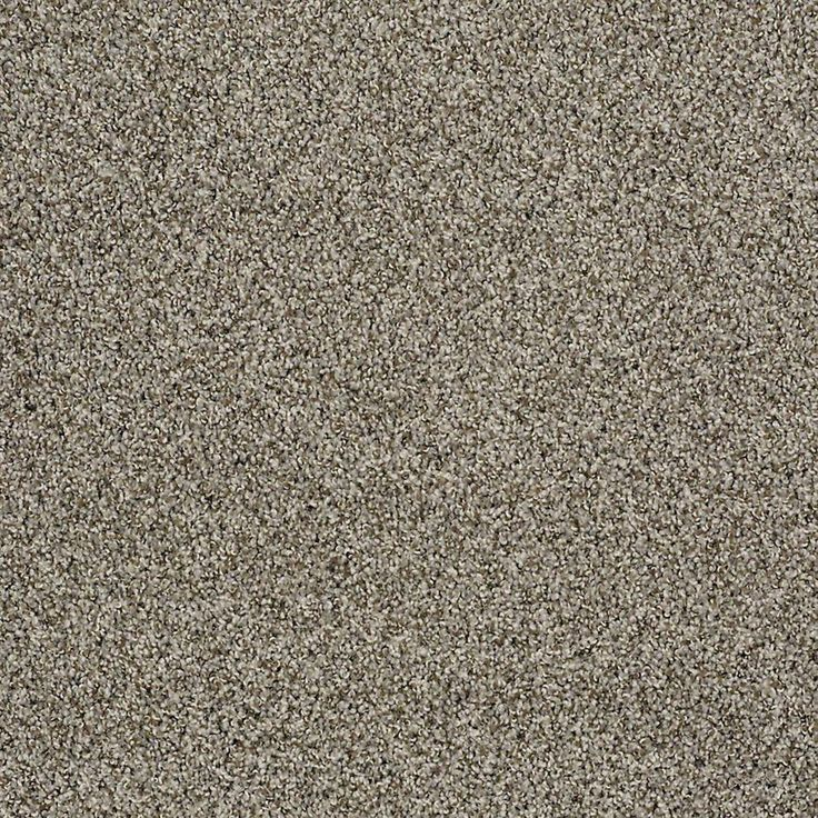 Serene Life Accent By Resista Soft Style From Carpet One