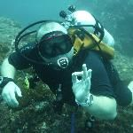 Bali Scuba Masters Reviews - Nusa Dua, Nusa Dua Peninsula Attractions - TripAdvisor