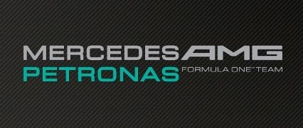 The team I'm supporting in the 2013 F1 World Championship